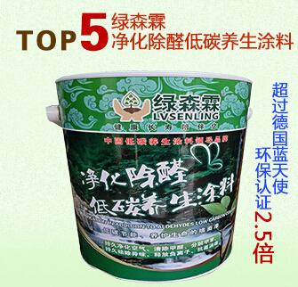 净化除醛低碳养生涂料